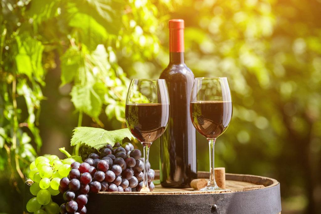 9 essential facts about Italian wine